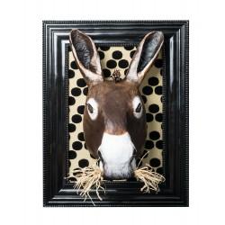 Blaise l'âne, trophée décoratif à suspendre