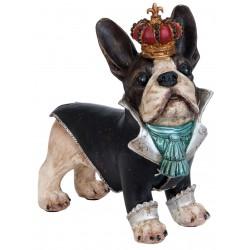Bouledogue dandy à couronne debout
