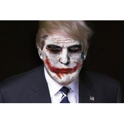 Portrait de Donald Trump Joker 30 x 40 cm